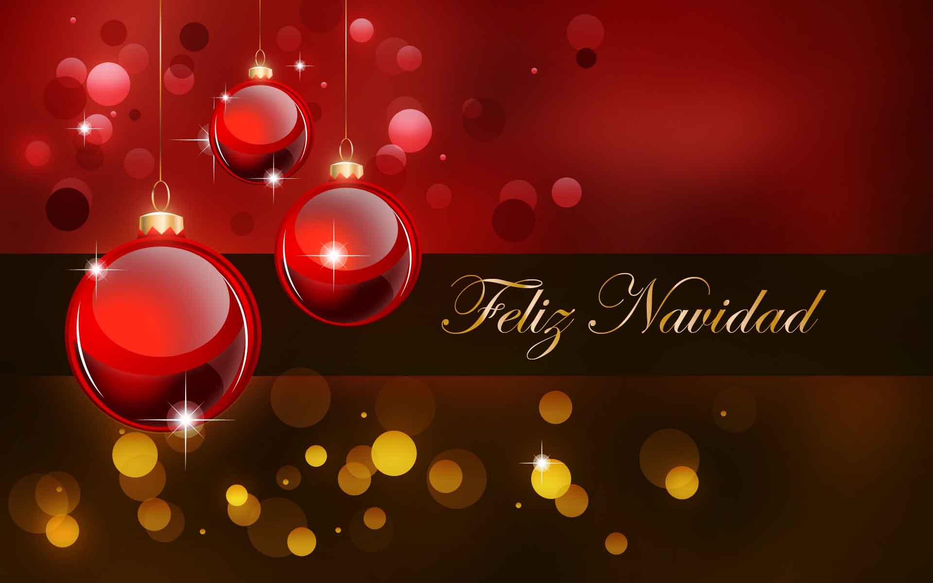Feliz Navidad Indaco Polietileno